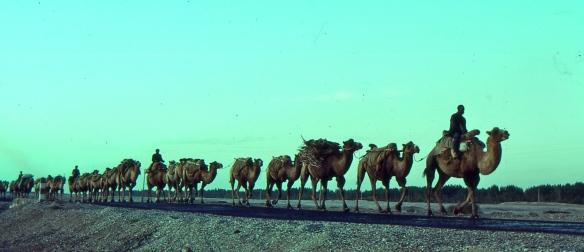 Silk_Road_1992