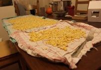 Hier trocknen die gekochten Sojabohnen. Es ist wichtig, dass sie an der Oberfläche nicht mehr feucht sind.
