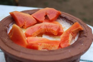 Unser frühstück: Büffel-Joghurt mit Papaya